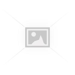 """DD-205Г/S1PL, Переговорное устройство """"Клиент-кассир"""" с записью рарговоров"""